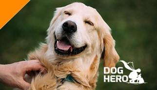 Parceiro TLC: Dog Hero